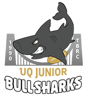 Taylor Bridge Bull Sharks